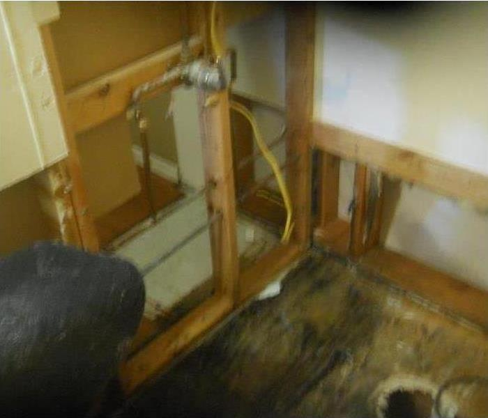 Oak Ridge Mold Damage from a Water Leak After