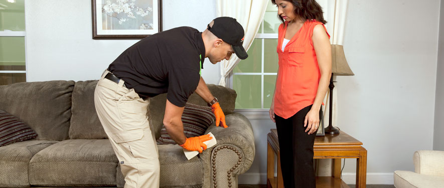 Oak Ridge, TN carpet upholstery cleaning